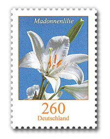 Briefmarke Madonnenlilie