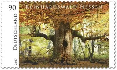 """Briefmarkenserie """"Wildes Deutschland"""" Rheinhardswald"""