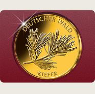 "2013 - 20-Euro-Goldmünze ""Kiefer"""