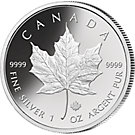 5 Dollars Silber Münze Maple Leaf 2017, st