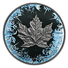 5 CAD Silbermünze Kanada Deep Frozen Edition Maple Leaf 2017 ST