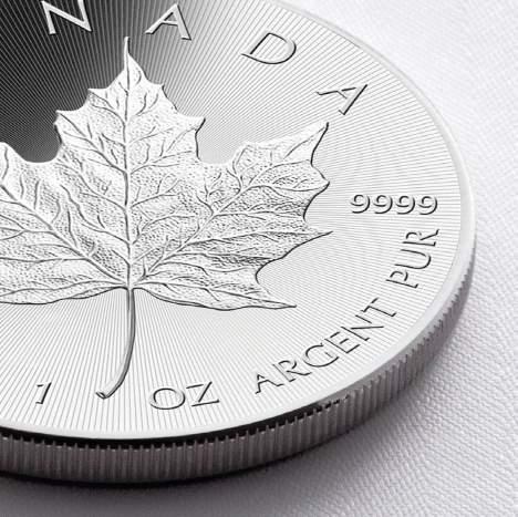 Maple Leaf Detail