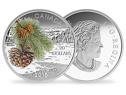 $20 Fine Silver Coin - Forests of Canada - Coast Shore Pine