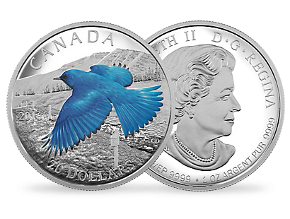 """The Migratory Birds Convention: 100 Years of Protection the Mountain Bluebird"" $20 fine silver coin"