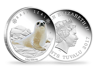 Polar Babies - Harp Seal 2017 1/2 oz Silver Proof Coin