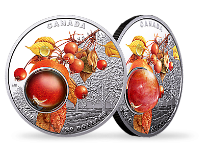 Mother Nature's Magnification: Morning Dew 2018 $20 Fine Silver Coin