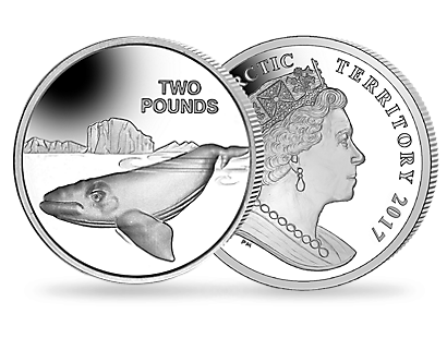 Southern Right Whale 2017 Sterling Silver Proof £2 Coin