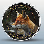 Wildlife of Britain - Red Fox Silver-Plated Proof-like Commemorative