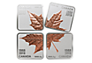 "Kanada 2018 4er-Set ""Silver Maple Leaf"""